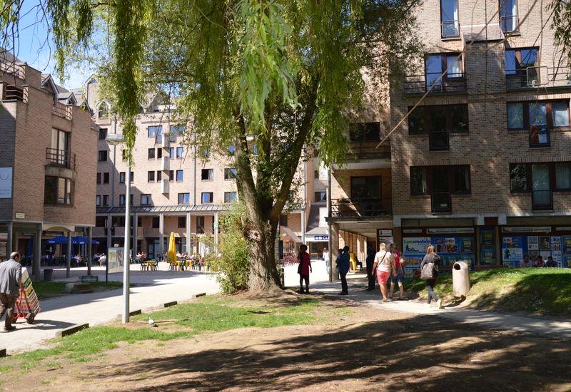 Campus Alma UCL