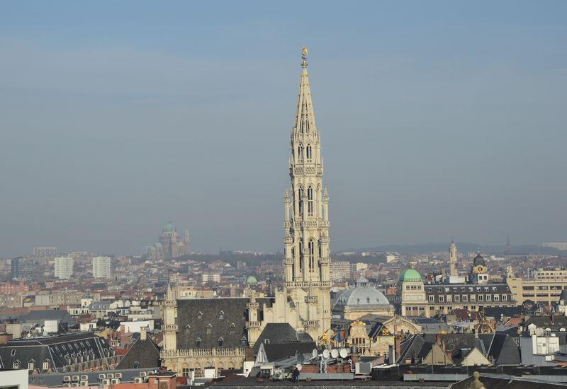 Vue de Bruxelles (Hôtel de Ville de la Grand Place)