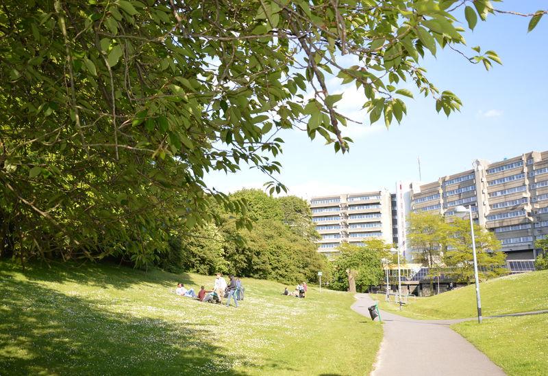 Campus Oefenplein - ULB-VUB